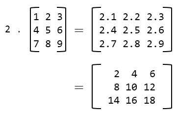 Scalar multiplication of matrix