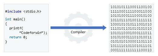 Programmer writing source code